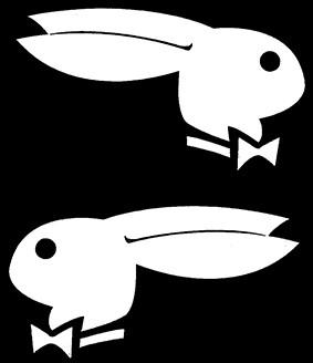 Playboy Hasen Paar