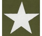 Militär Stern