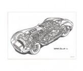 Cavara Ferrari Dino 196